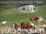 SPAGNA ESTATE 4X4 PIRENEI E DESERTO